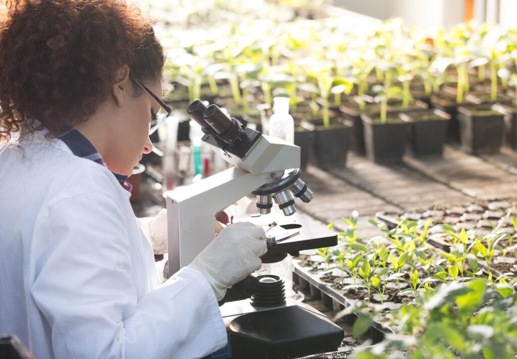 Agri-food innovation in Niagara