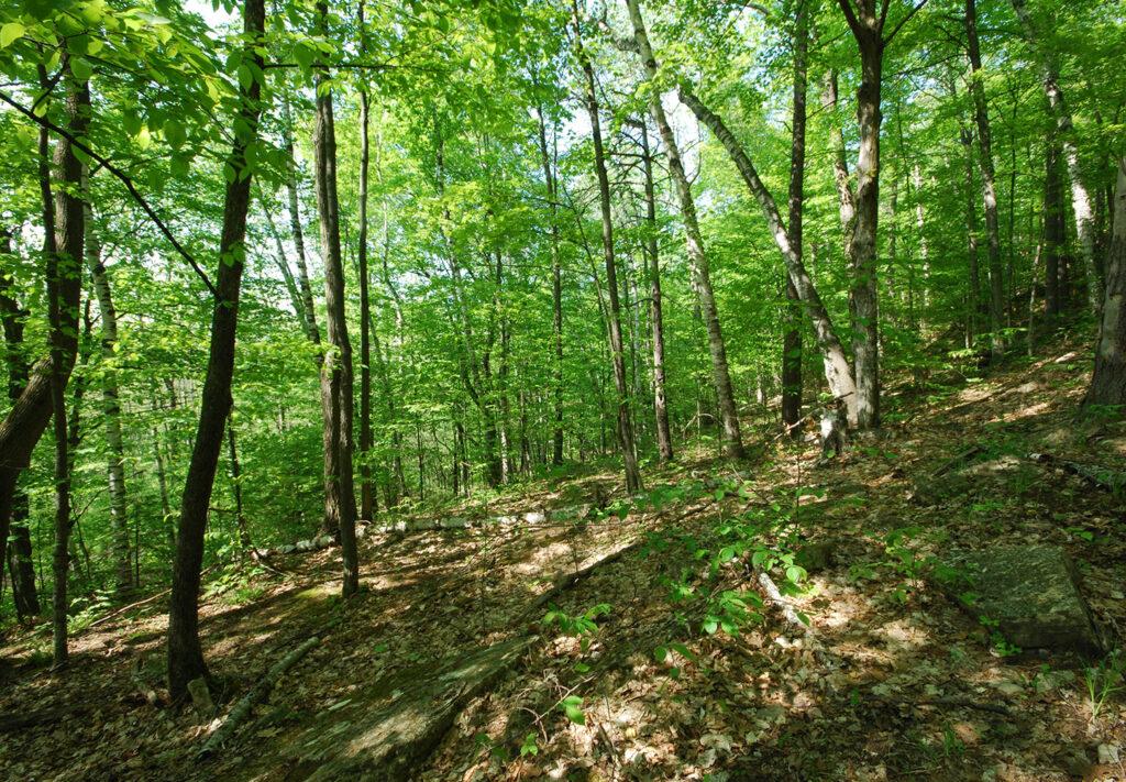House leader touts eco-tourism in Niagara