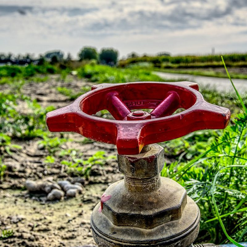 Hydro One and Niagara Peninsula Energy Inc. announce new agricultural water pump program