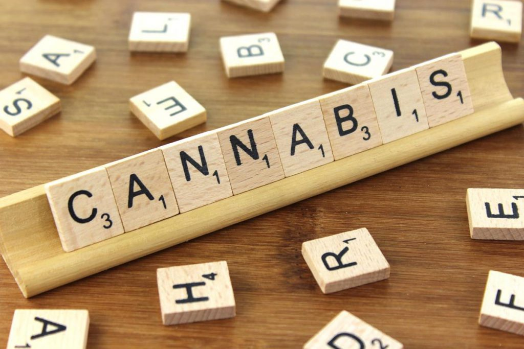 CannTrust™ reports record revenue for Q1 2018