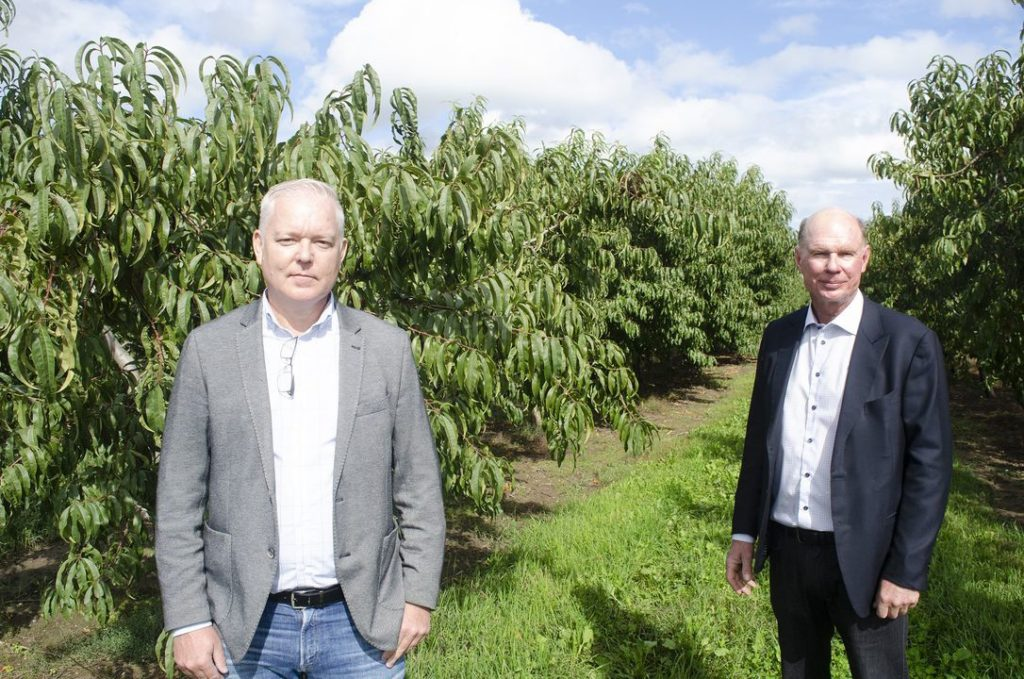 Growing the industry: The need to support NOTL's tender fruit growers